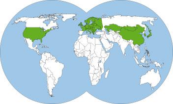 World-distribution-map-lasius-niger-Black-garden-ant