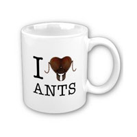 ant-mug