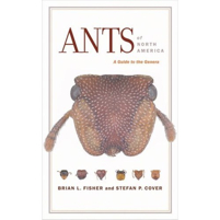 ants_of_north_america