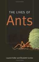 the_lives_of_ants