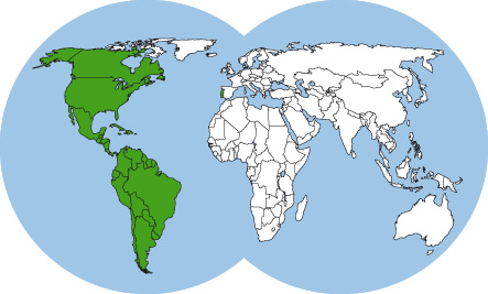 ants-of-americas-world-map