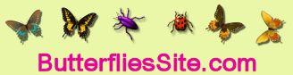 butterfliessite